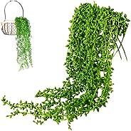 xianzhanSA 4 PCS Succulents Plants Artificial, 6 Heads 80cm Plastic Fake Hanging Plants, for Indoor Outdoor We
