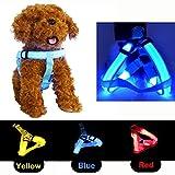 CDQ wasserdichtes, blinkendes LED-Hundegeschirr, stabiles Nylon-Gurtband, bequemes, leuchtendes und funkelndes Geschirr für Sicherheit bei Nacht, bequem für kleine, mittelgroße und große Hunde und andere Haustiere.