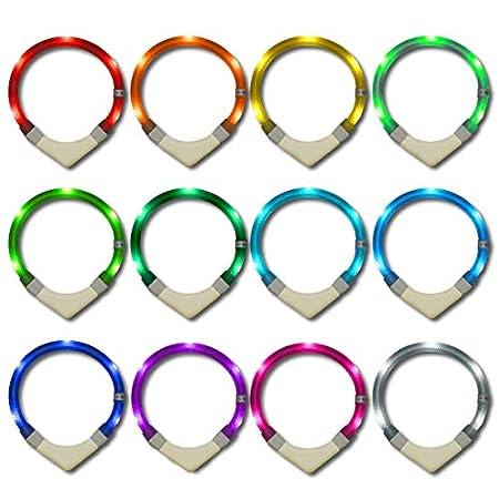 LEUCHTIE® Leuchthalsband Plus NL blau Größe 35 I nachleuchtend phosphoreszierendes Batterieteil I LED Halsband für Hunde…