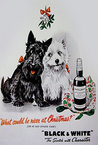 Black & White Scotch whisky westie scottie terrier hund weihnachten