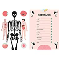 Il-corpo-umano-I-misteri-e-le-curiosit-sul-nostro-corpo-spiegati-in-un-colpo-docchio
