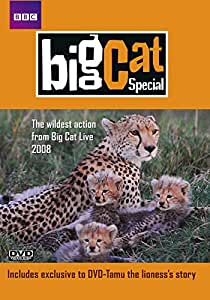 Big Cat Special [DVD] [2009]