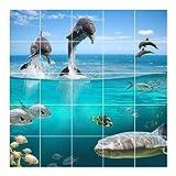 FoLIESEN Fliesenaufkleber für Bad und Küche - Fliesenposter - Motiv- Wasserwelt - Fliesengröße 15x15 cm - Fliesenbild 45x45 cm