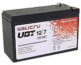 Salicru UBT 12/7 - Batería para SAI (7 Ah, 12 V)