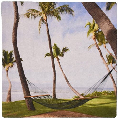 3drose-llc-8-x-8-x-025-inches-hammock-under-hawaiian-palm-trees-maui-hawaii-jim-goldstein-mouse-pad-