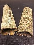 2 große Höhlen der Wunderwaffe Seemandelbaum für Kenner (Ø~3-4cm, Länge 15-20cm, zusammen über 100gr) Deko Aquarium, Wasseraufbereiter, Catappa Bark Tubes