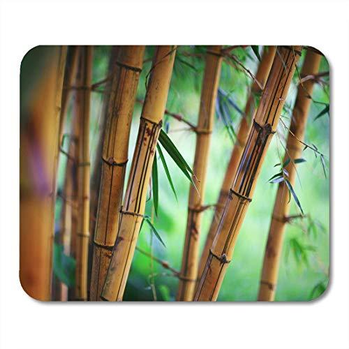 Ruhiger Garten (Luancrop Mauspads Natur-grüner Zen-Bambuswaldflacher Dof-Garten-ruhige Mausunterlage für Notizbücher, Tischrechnermatten Bürozubehöre)