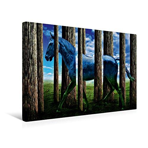 Premium Textil-Leinwand 45 cm x 30 cm quer Das Pferd | Wandbild, Bild auf Keilrahmen, Fertigbild auf echter Leinwand, Leinwanddruck