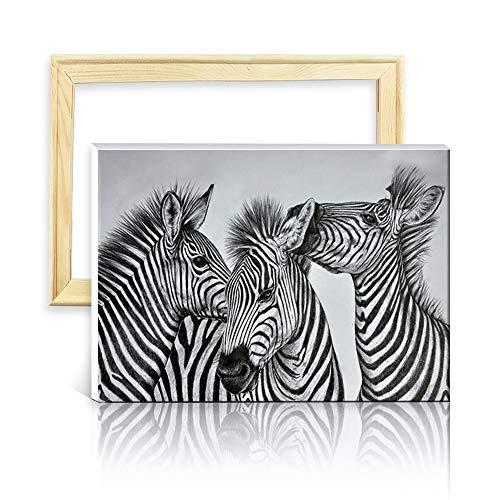 Ufengke Kit Pintura Diamantes 5D Cebra Blanca Negra