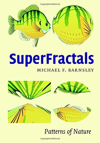SuperFractals by Michael Fielding Barnsley (2006-09-11)