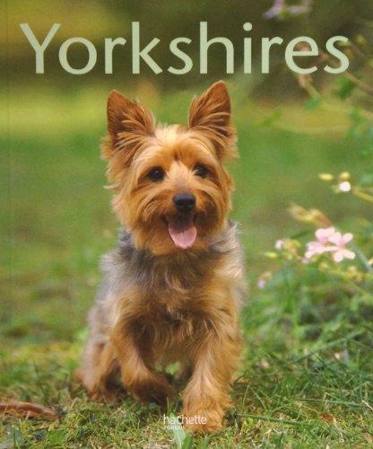 Yorkshires : Bien les comprendre et bien les soigner, les conseils d'un expert pour votre animal favori par Armin Kriechbaumer