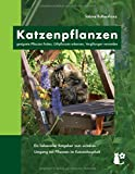 Katzenpflanzen: geeignete Pflanzen finden, Giftpflanzen erkennen, Vergiftungen vermeiden