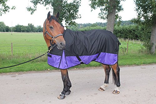 Cwell-Equine-New-LightWeight-BlackPurple-turnout-rugrain-sheet-no-fill