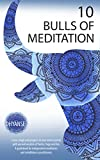 10 Bulls of Meditation: Learn, laugh and progress in your inner journey with ancient wisdom of Tantra, Yoga and Zen - A guidebook for independent meditators and mindfulness practitioners