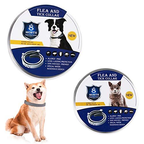 Floh- und Zeckenhalsband, 8-monatiger Schutz, verstellbares, wasserdichtes Halsband für Hundewelpen, Kätzchen, Katzen, natürlich und sicher,Dog