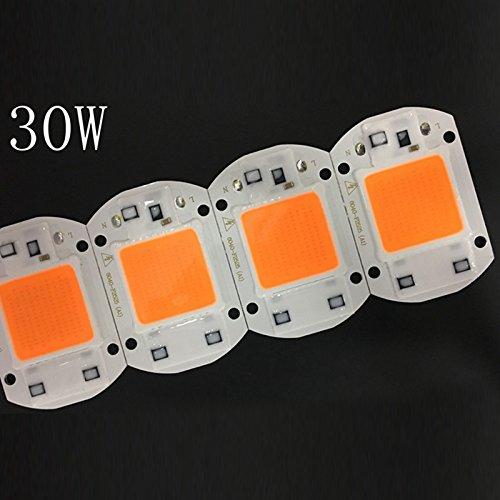 Zantec 110 V/220 V 20 Watt/30 Watt/50