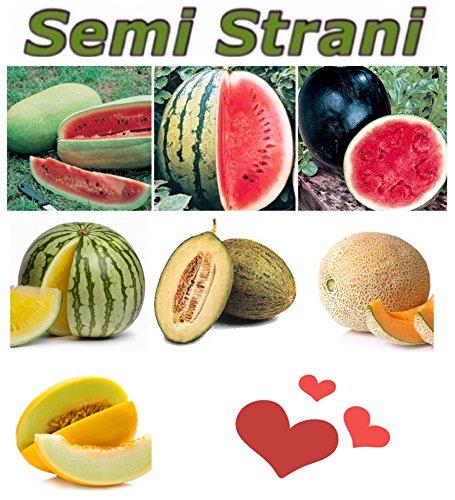 70 Samen: Wassermelone Riesen Amerikanischen Charleston Gray, Wassermelone Sugar Baby, Wassermelone Gelb, Melone Gelbe Kanarische, Melone Grünen Piel De Sapo, Zuckermelone Charentais Aus Marokko
