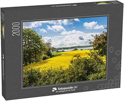 fotopuzzle.de Puzzle 2000 Teile Rapsblüte im Frühjahr, Lindaunis Schlei, Region Angeln, Schleswig Holstein, Norddeutschland