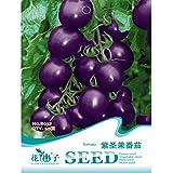 Calli 20pcs semillas púrpura tomate cherry planta vegetal fruta orgánica