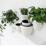 sungmor Garten-3Stück Creative zum Aufhängen Übertopf, Selbstwässernder Blumentopf, Wand montiert Pflanzen Halter w/Lang Zeit Wasser Aufbewahrung Funktion