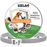 SZELAM Pulce e zecca Collare per cani, 6 mesi Protezione impermeabile e ingredienti di sicurezza Controllo contro prurito Uova di larve, regolabile per Cani