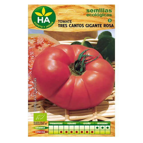 2-sobres-de-semillas-ecologicas-tomate-tres-cantos-gigante-rosa-ha
