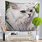 GT Tapestry, Creativity, Pets, White cat, Wall Hanging Tapestry, Hippie Tapestries, Print Tapestry, Cotton Handmade Tapestry, Twin Size Bedding Bedspread Picnic Beach Sheet, Table Cloth, Decorative Wall Hanging, 150*200CM