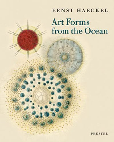 Art Forms from the Ocean: The Radiolarian Prints of Ernst Haeckel by Breidbach, Olaf (2005) Paperback