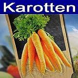 Gemüsesaat Sortiment SET Karotten, Pflanzgefäße, Saatpaket, Dünger, Gemüse Saat (LHS)