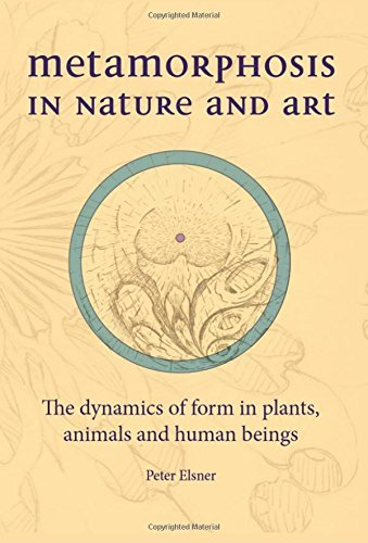 Metamorphosis in Nature and Art: The Dynamics of Form in Plants, Animals and Human Beings (Art & Science) by Peter Elsner (2013-11-01)
