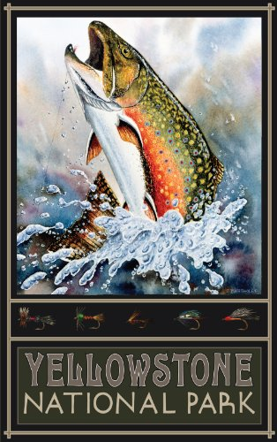 Northwest Art Mall Yellowstone National Park Brook Trout BT Poster, 28 x 43 cm