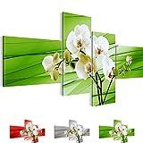 Bilder 200 x 100 cm - Orchidee Bild - Vlies Leinwand - Kunstdrucke -Wandbild - XXL Format – mehrere Farben und Größen im Shop - Fertig Aufgespannt !!! 100% MADE IN GERMANY !!! - Blume – Abstrakt 202041c