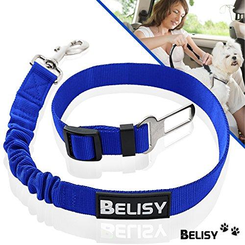 BELISY Hunde-Sicherheits-Gurt fürs Auto - höchste Sicherheit für Dich und Deinen Hund - mit besonders elastischer Ruckdämpfung für maximalen Komfort - passend für alle Hunderassen - Premium Markenqualität - Blau