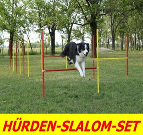 AGILITY-ÜBUNGS-HÜRDEN/SLALOM-STANGEN-SET IN ROT/GELB, PRIME DAY-ANGEBOT