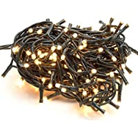 takestop® 100 LED LUCI Bianco Caldo Filo Verde Albero di Natale Catena Luminosa Controller 8 FUNZIONI MINILUCCIOLE LAMPADINE LUCCIOLE
