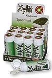 Xylit Kaugummi Spearmint - ohne Titandioxid, Inhalt 30 Stk, 12 Packungen