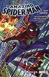 Amazing Spider-Man: Worldwide Vol. 1 (The Amazing Spider-Man: Worldwide, Band 1)