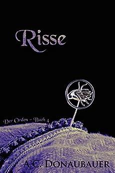 Risse: Der Orden - Buch 4