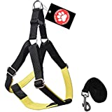Pawzone Yellow Nylon Body Harness With Leash For Dogs -Medium(3/4 Inch)