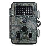 VTIN - Cámara de vigilancia para caza, con visión infrarroja nocturna, impermeable IP66,12Mp, 1080P, HD