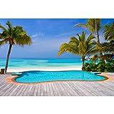 6b28c7bc Cassisy 1,5x1m Vinilo Mar Telon de Fondo Playa de Arena Tropical Piscina  Cielo Soleado Palmeras Fondos para Fotografia Party Infantil Photo Studio  Props ...