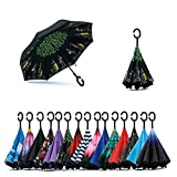 Parapluies - Best Reviews Guide