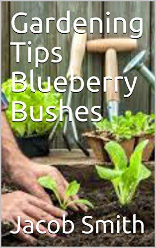 Gardening Tips Blueberry Bushes (English Edition)