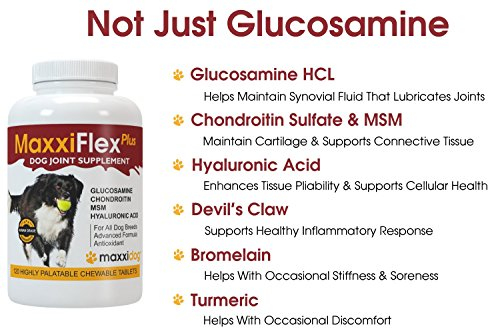 MaxxiFlex Plus Dog Joint Supplement with Glucosamine, Chondroitin, MSM, Hyaluronic Acid, Devils Claw, Bromelain and Turmeric – 120 Liver Flavoured Tablets