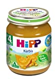 HiPP Reiner Kürbis Bio, 6er Pack (6 x 125 g)