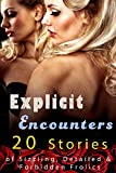 Explicit Encounters!  (20 Stories of Sizzling, Detailed & Forbidden Frolics)