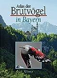 Atlas der Brutvögel in Bayern (Grundlagenwerke)