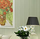 Longless Wallpaper, simple, moderne, rayé, papier peint, chambre à coucher, salle de séjour, 3d, relief, tissu, papier peint, 10*0.53M