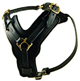 Dean & Tyler Leather Dog Harness -