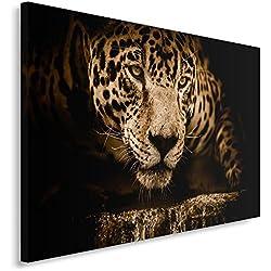 Feeby Cuadro en Lienzo - 1 Parte - 80x120 cm, Imagen Impresión Pintura Decoración Cuadros de una Pieza, Leopardo, Naturaleza, Marrón